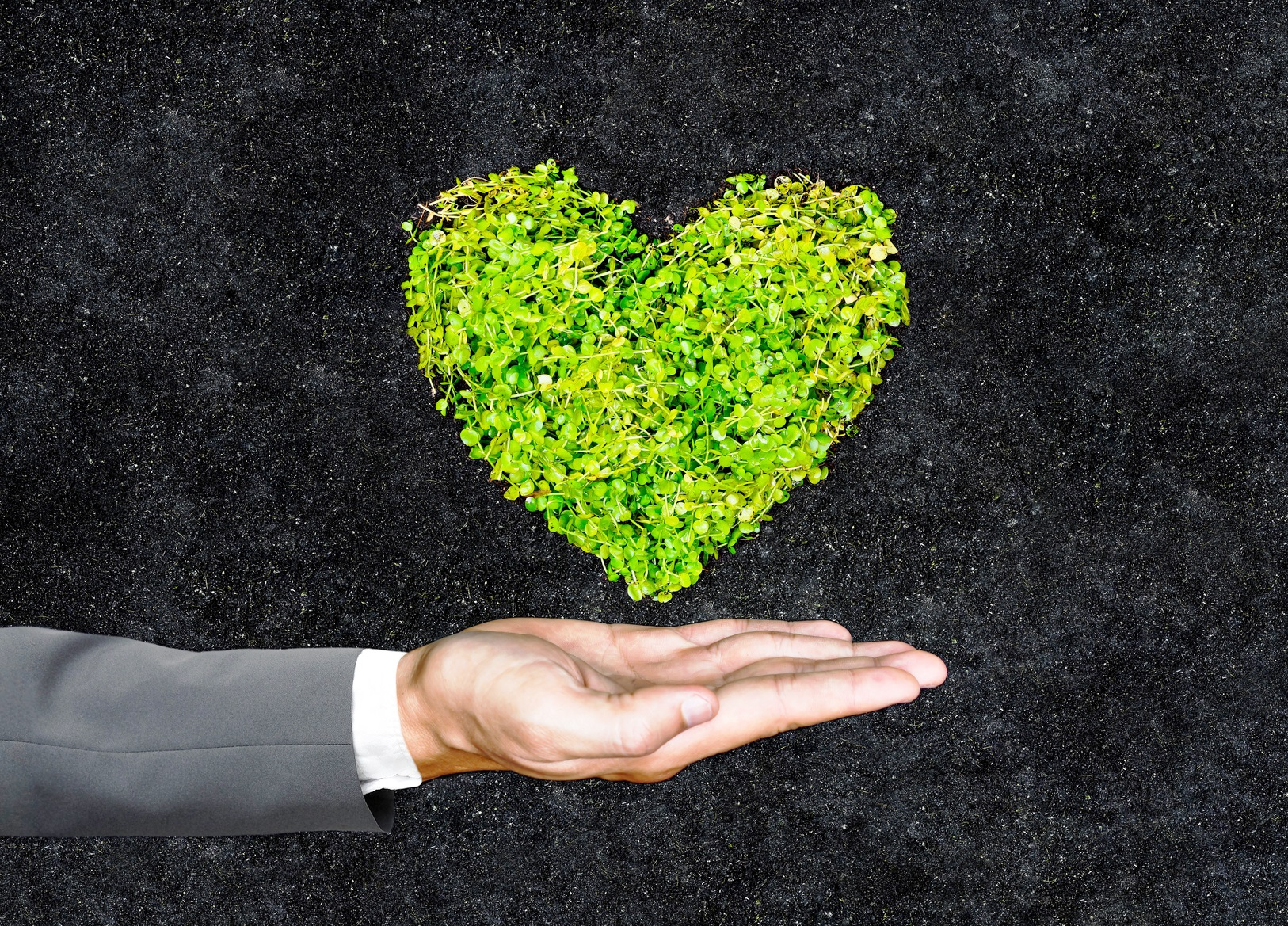 Sustainability is at the heart of PAC