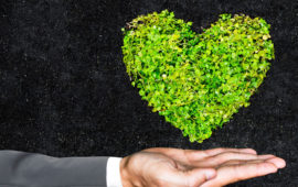 Sustainability is at the heart of the project